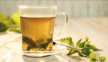 Brennessel-Tee hilft beim Abnehmen