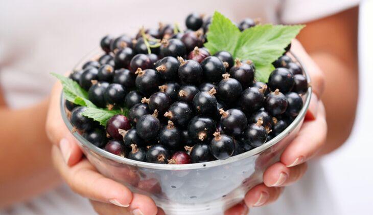 Eine Portion Schwarze Johannisbeeren (125 Gramm) enthält 8 Gramm Ballaststoffe