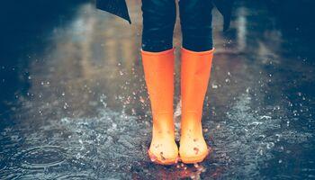 Erkältungen vorbeugen: Die besten Tipps und Tricks