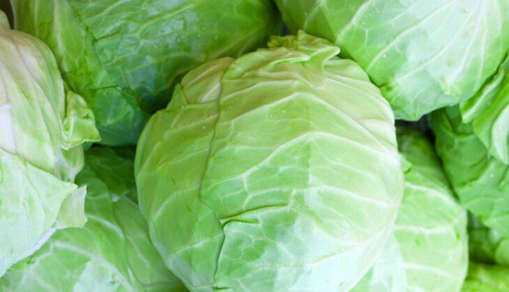 Gemüse mit viel Vitamin C