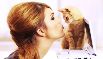 Katzenallergie bald kein Thema mehr