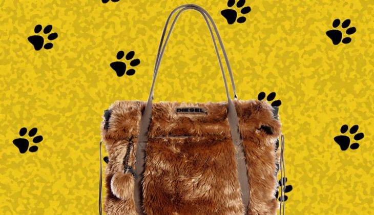 Modetrend: Animal-Outfit