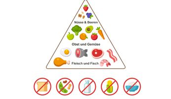 Paleo Lebensmittel-Pyramide