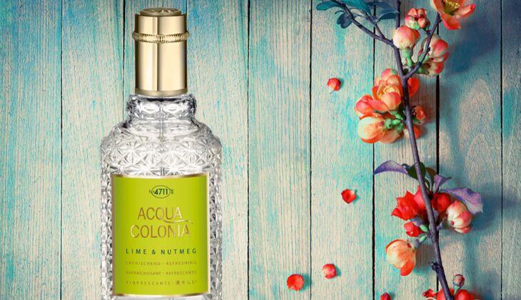 Parfüm Trend 2015 für Frauen