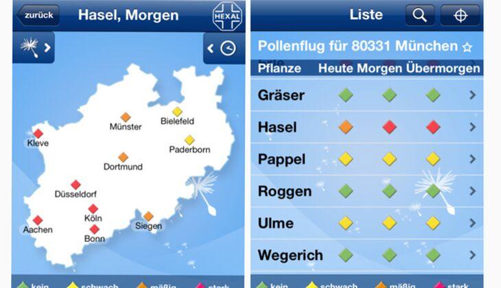 Pollenflug-Vorhersage