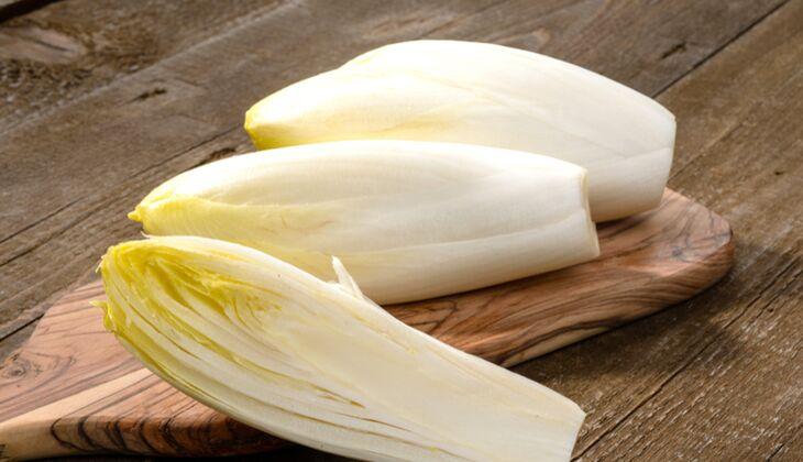 Salatsorten in der Übersicht: Chicorée