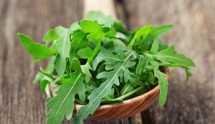 Salatsorten in der Übersicht: Rucola
