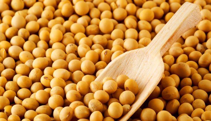 Soja gehört zu den wohl wandelbarsten Lebensmitteln. Aus der Bohne lassen sich allerhand Gerichte herstellen