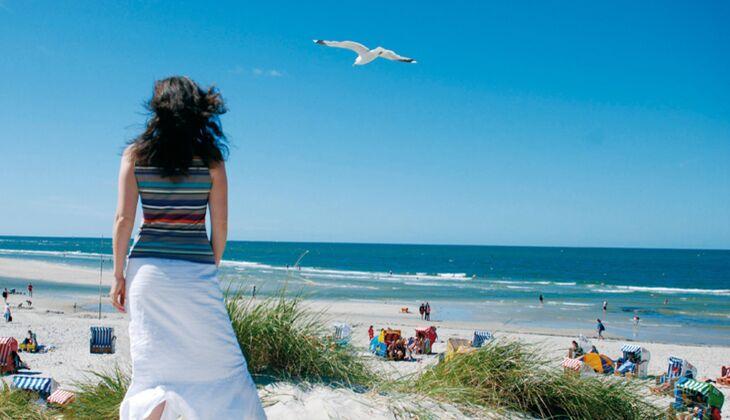 Strand an der Nordsee: Amrum