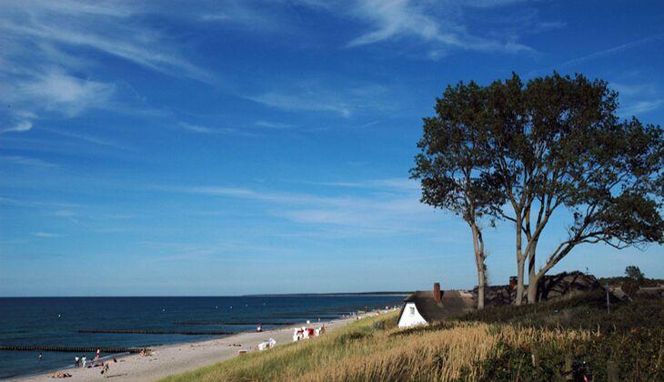 Strand an der Ostsee: Fischland-Darß-Zingst