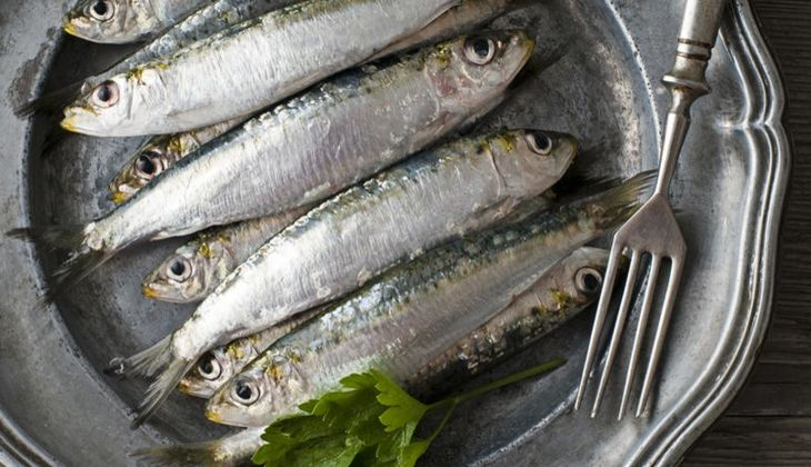 Tierische Lebensmittel mit Vitamin B6