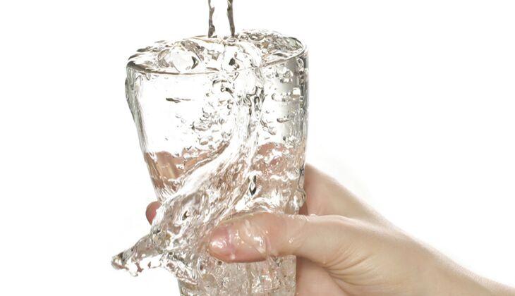 Wasser hilft gegen Kater