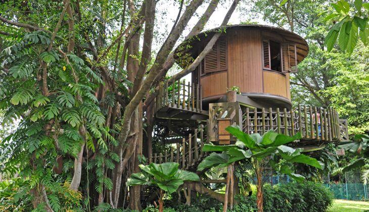 Wochenendtipp: Eine Übernachtung im Baumhaus